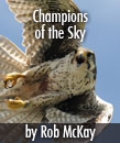 Champions of the Sky