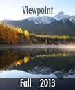 Viewpoint Fall 13