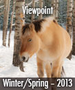 Viewpoint Winter 13